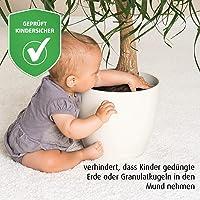 reer 83221 protector para plantas Negro Nylon