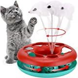 Cat Toys, Cat Toys for Indoor Cats,Interactive Kitten Toys Roller Tracks with Catnip Spring Pet Toy with Exercise Balls Tease