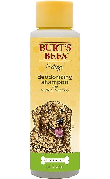 Amazon.com: kurgo – barro Perro ducha: Mascotas