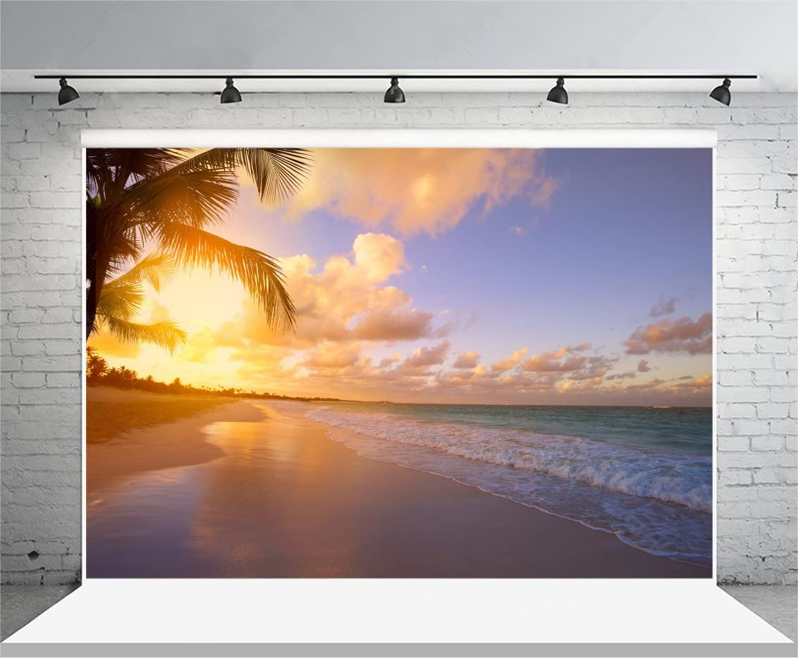 Yeele Seaside Backdrops 9x6ft //2.7 X 1.8M Beach Sunrise Sunset Dusk Sunshine Palm Tree Wave Outdoor Pictures Lovers Adult Artistic Portrait Photoshoot Props Photography Background Video Drape