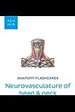 Anatomy flashcards: Neurovasculature of head & neck: Learn all nerves, arteries and veins on the go (Kenhub Flashcards…