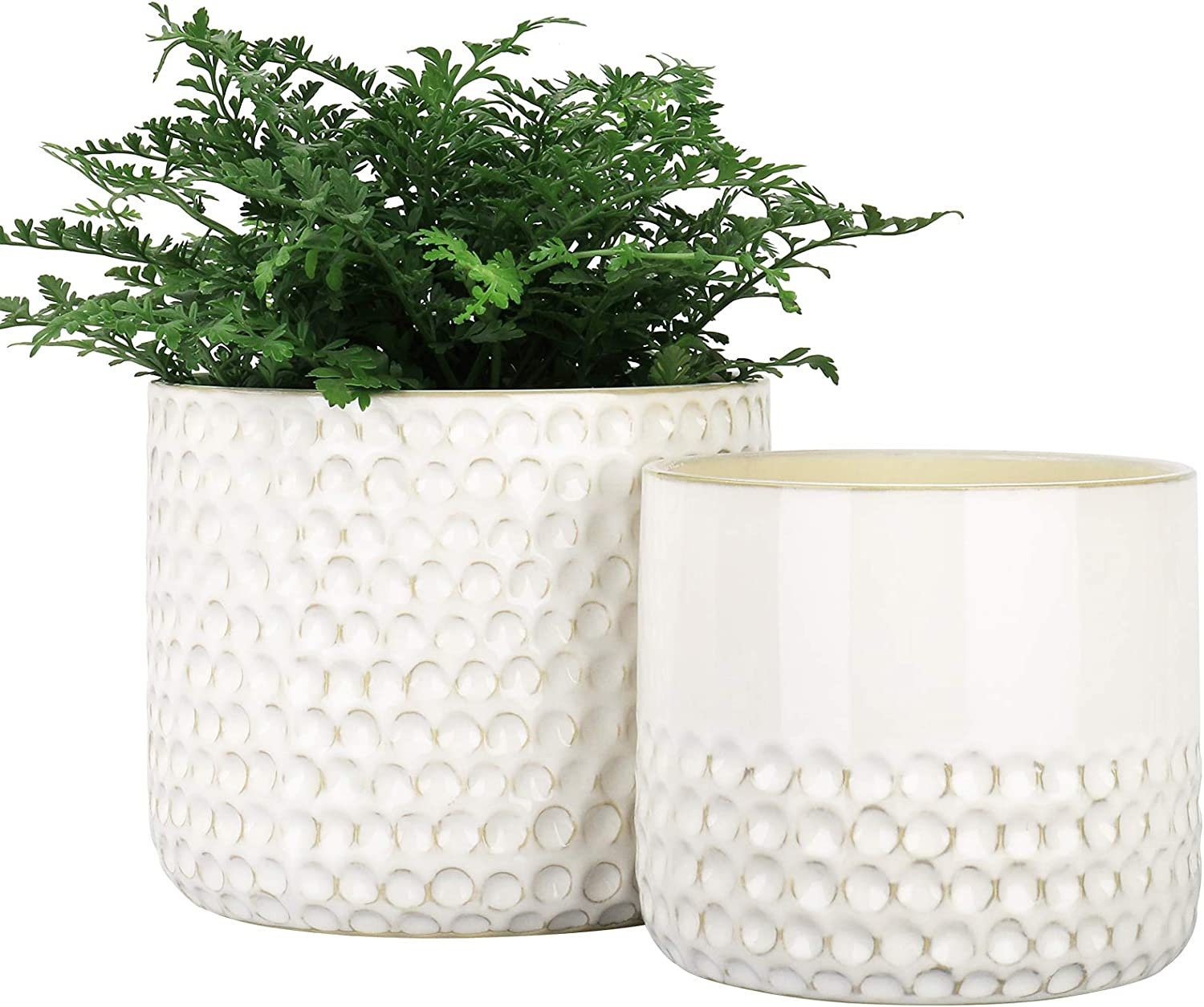 Amazon Com La Jolie Muse Ceramic Planter Flower Plant Pots 6 7 5 5 Inch Concave Dot Patterned Cylinder Flower Pot With Drain Hole For Indoor Set Of 2 Ivory Garden Outdoor
