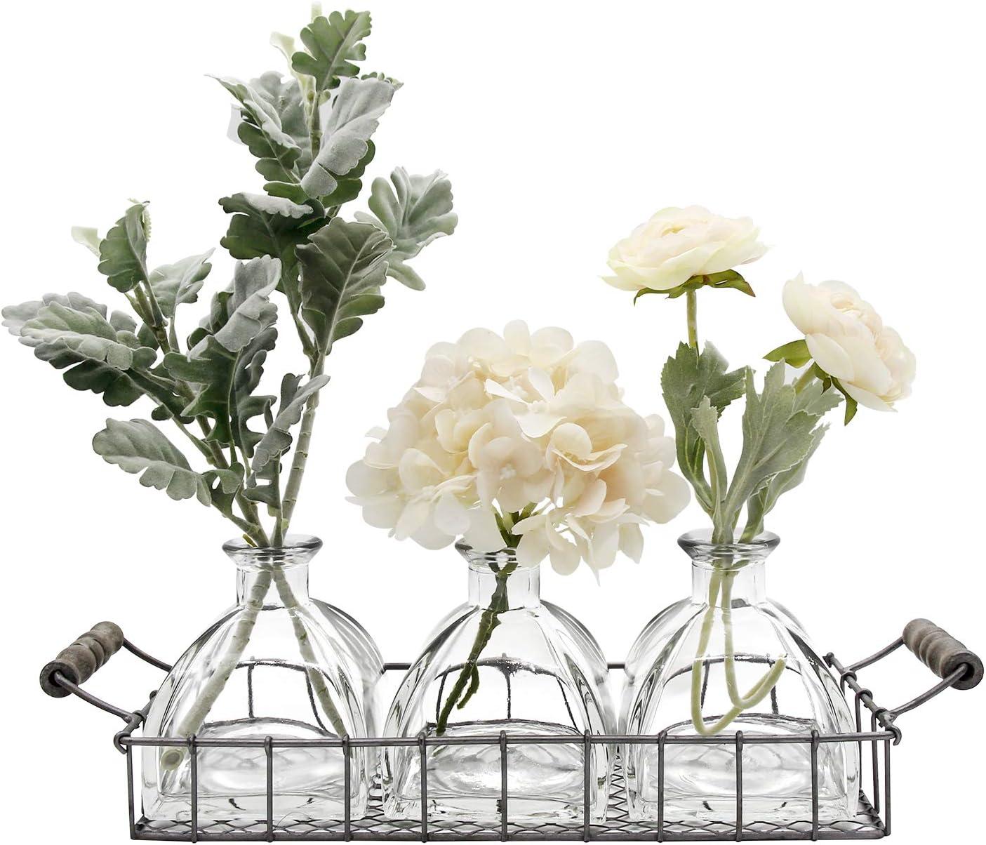 FUNSOBA Rustic Flower Vase Set with Metal Tray Farmhouse Glass Bottles for Decor (3 Vase Type C)