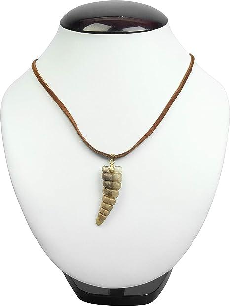 598-J31BRG Brown /& Gold Real Rattlesnake Rattle Necklace 10UBW