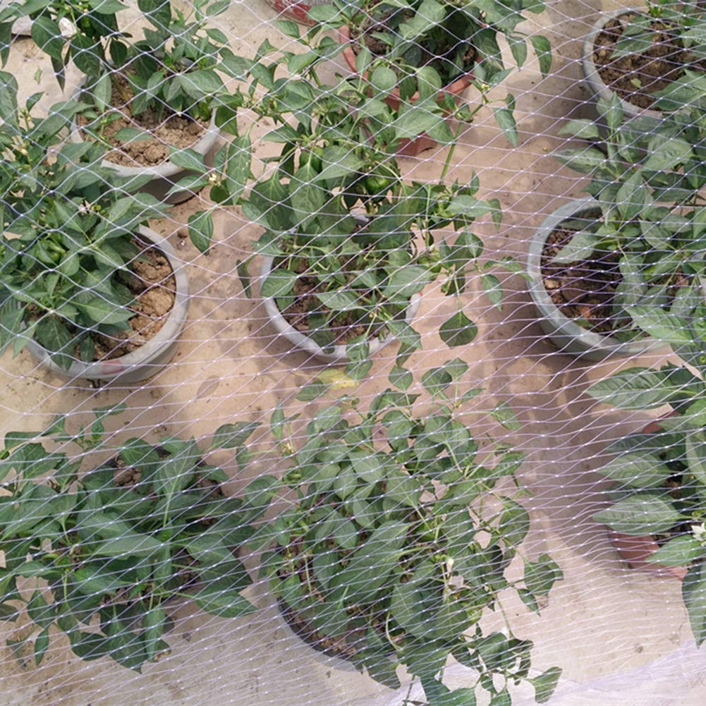 fruits filet de protection contre les animaux de compagnie volaille couverture en nylon /épais anti-oiseaux pour plantes de jardin Filet de protection anti-oiseaux pour arbres fruitiers et l/égumes