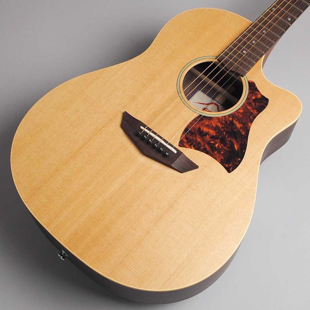 FUJIGEN AG2 NTF アコースティックギター B0734WB32K