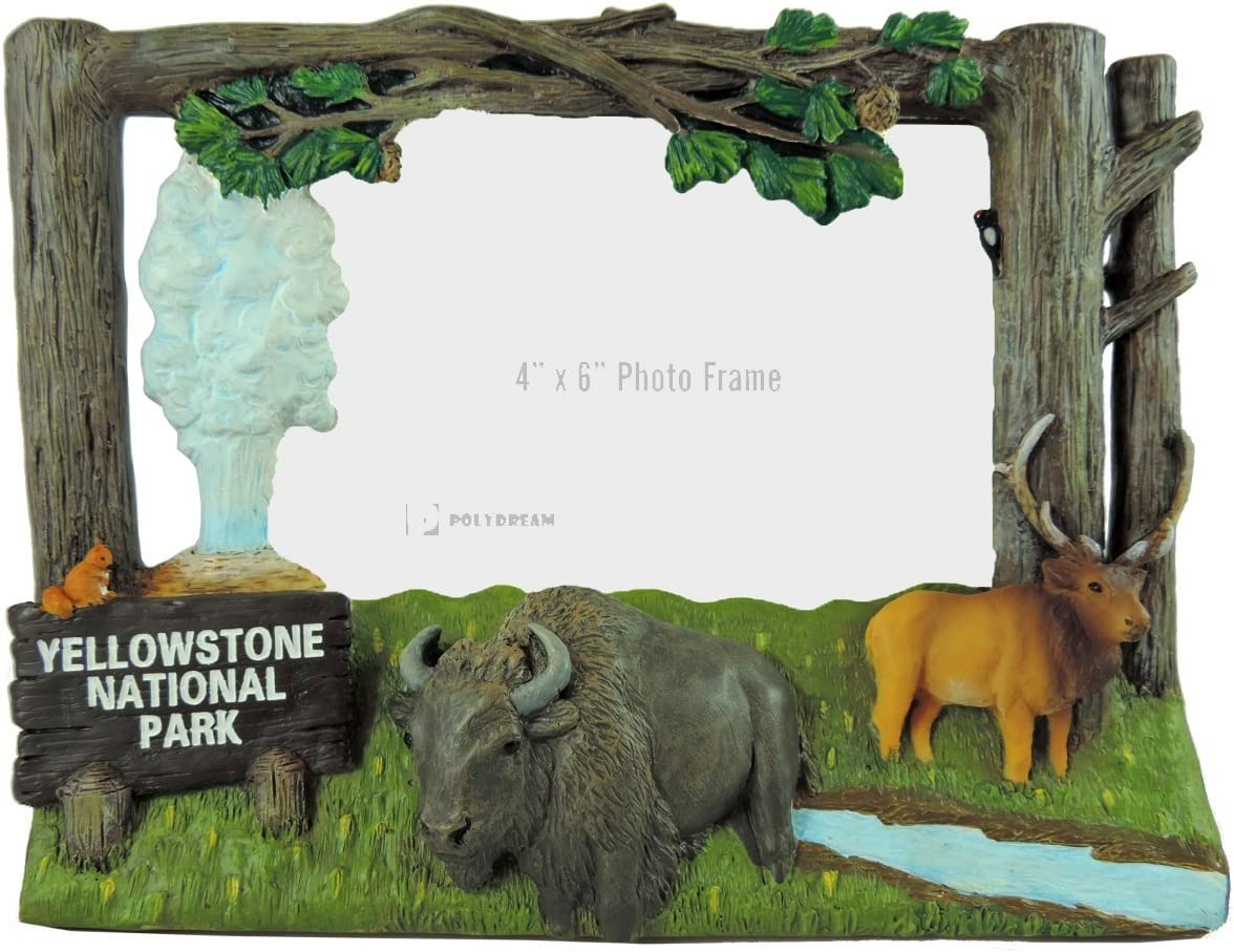 Yellowstone National Park Photo Frame Amazon Ca Home Kitchen