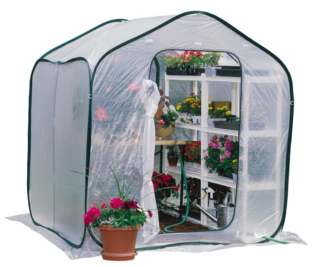 amazon com flower house fhsp300 springhouse greenhouse free