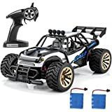 Crenova Electric RC Car Offroad Remote Control Car RTR RC Buggy RC Monster Truck 1:16 2WD 2.4Ghz High Speed with 2 Rechargeable Battery