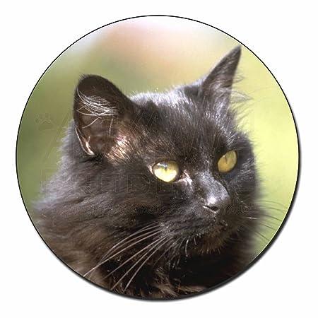 Beautiful Fluffy Black Cat Fridge Magnet Stocking Filler Christmas Gift AC-2FM