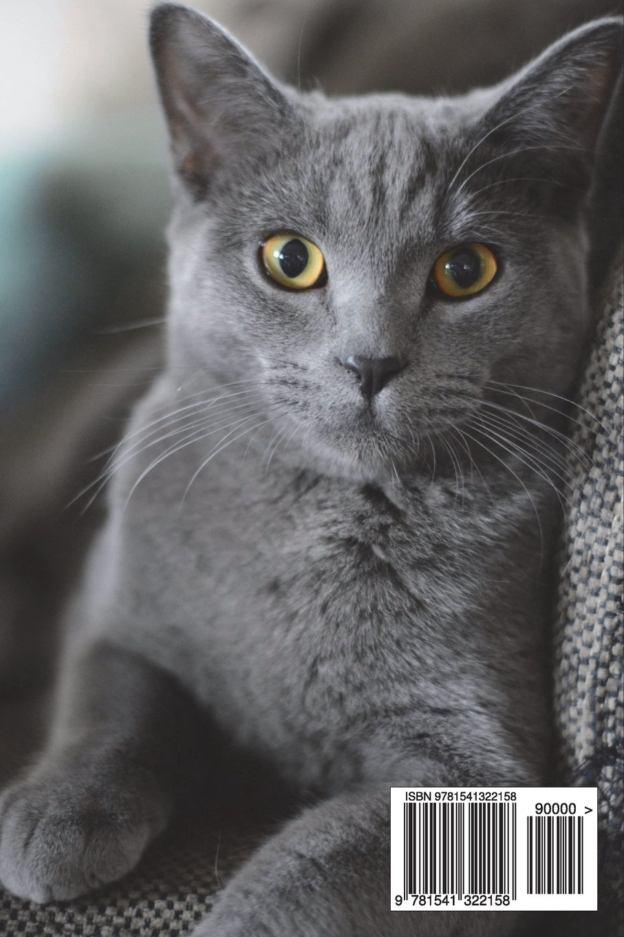 Gray Or Grey British Shorthair Cat Portrait Journal 150 Page