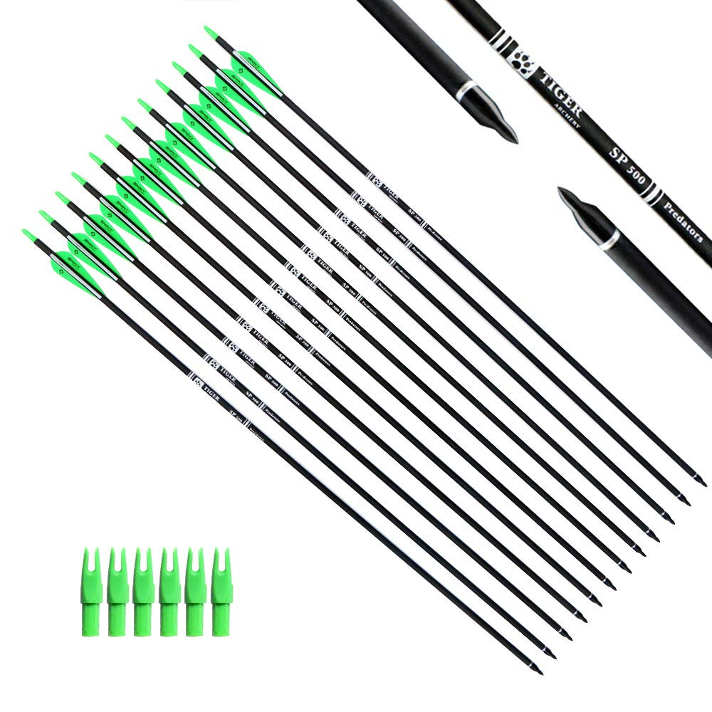 Tiger Archery 30Inch Carbon Arrow Practice Hunting Arrows with Removable Tips for Compound & Recurve Bow(Pack of 12) (Green White) by Tiger Archery