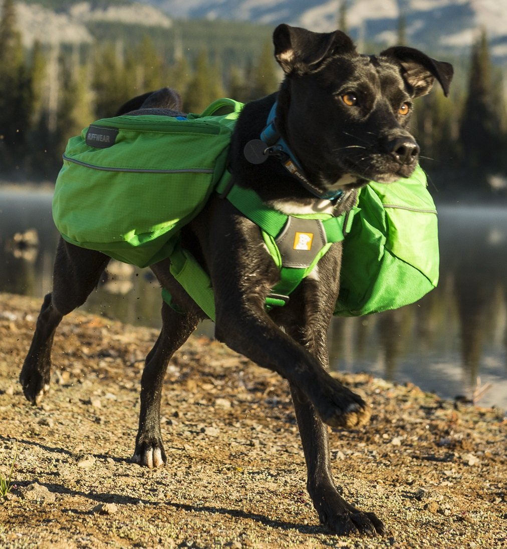 RUFFWEAR 2017 APPROACH DOG PET BACKPACK ♦ ADJUSTABLE EVERYDAY HIKING CAMPING PACK ♦ ALL SIZES AND COLORS (Medium, Meadow Green)