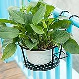Starter, Estante de la maceta de colgante de pared de rábano verde,Soporte de flores de ventana,bronce, blanco, negro