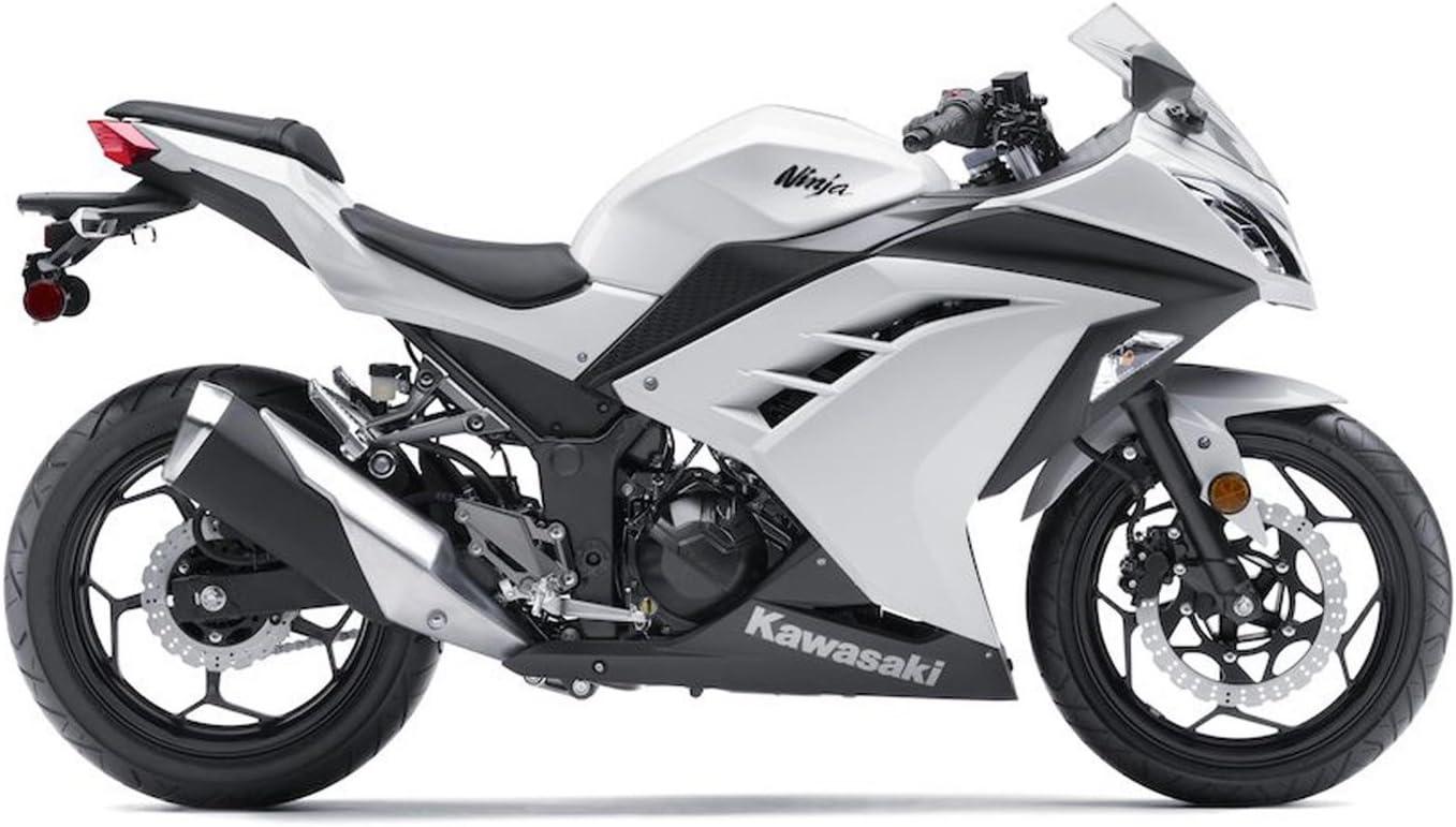Amazon.com: Pedal de freno original Kawasaki Ninja 300 OEM ...