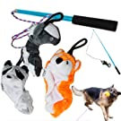 Jalousie Dog Flirt Pole with Three Squeaky Toys Plush Toys Dog Teaser Wand with Refills - Upgraded Rope