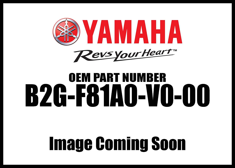 B2GF81A0V000 2016-2019 Genuine Yamaha XSR 900 700 OE Waterproof Storage Cover