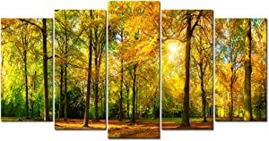 Visual Art Decor 5 Pieces Large Canvas Prints Autumn Sunshine Forest Trees Painting Landscape Picture Wall Art Framed and Stretched Artwork for Home Living Room Guest Bedroom Decoration (01 Fall)