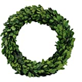 Preserved Boxwood Wreath, Boxwood Round Wreath, Preserved Garden Boxwood Wreath (10 inches)