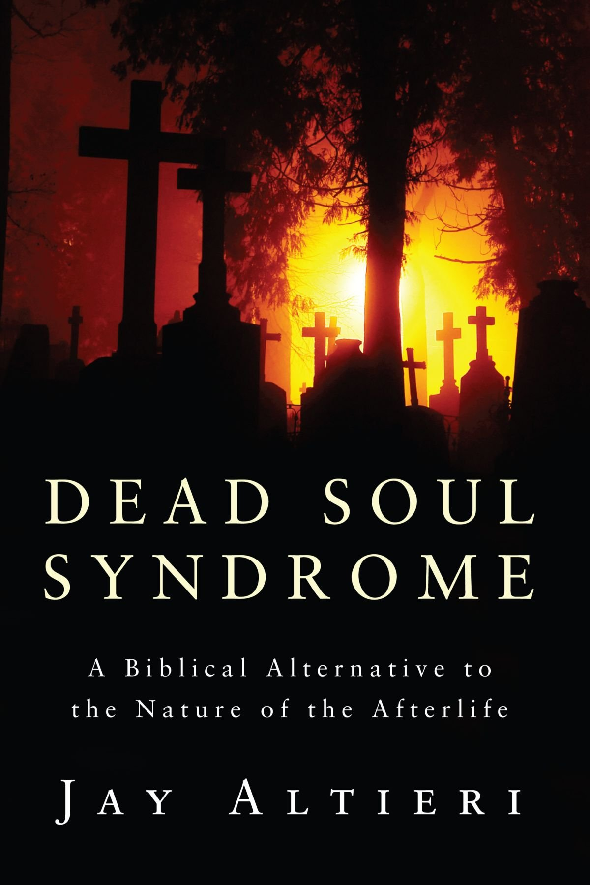 Download Dead Soul Syndrome: A Biblical Alternative to the Nature of the Afterlife pdf