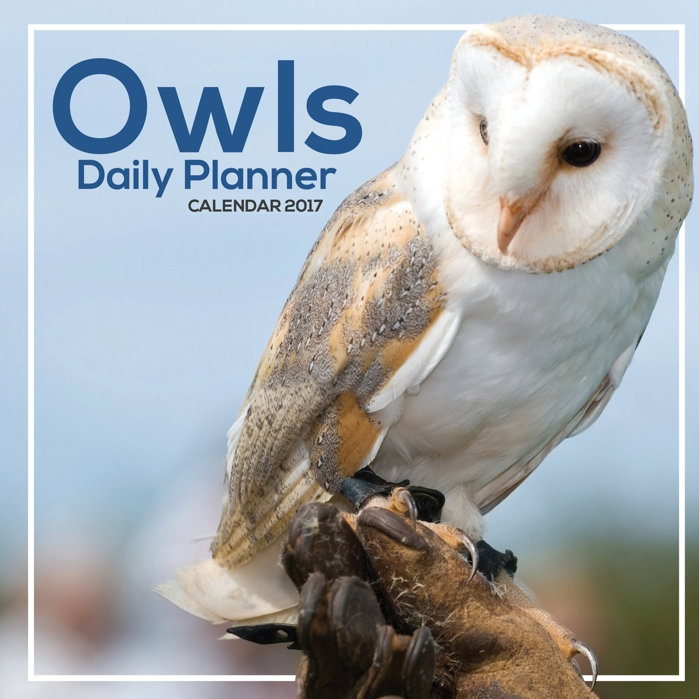 Download Owls Daily Planner Calendar 2017 pdf