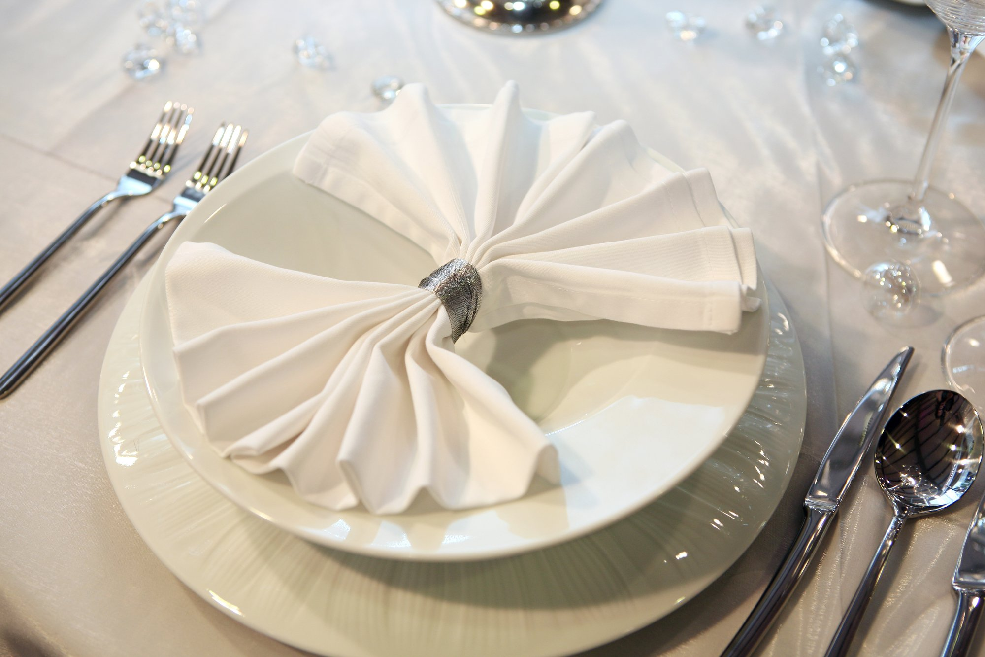 SPRINGROSE Huge 20 in. x 20 in. White Cloth Napkins (pack of 50). Perfect On Your List Of Party Decorations.