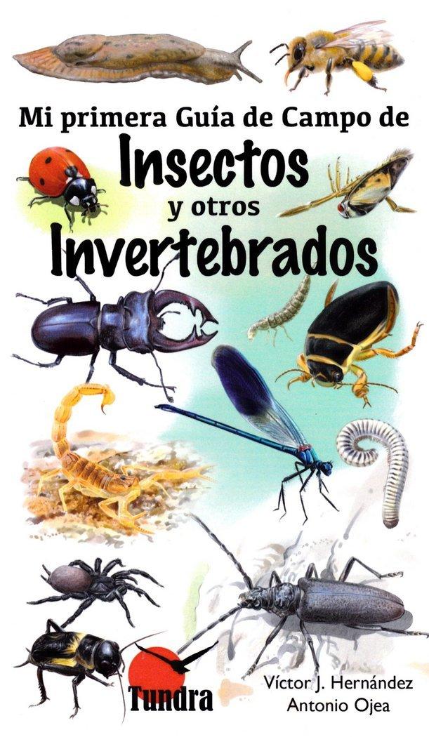 Mi primera guía de campo de insectos y otros invertebrados: Amazon.es: Ojea Antonio, Ojea Antonio: Libros