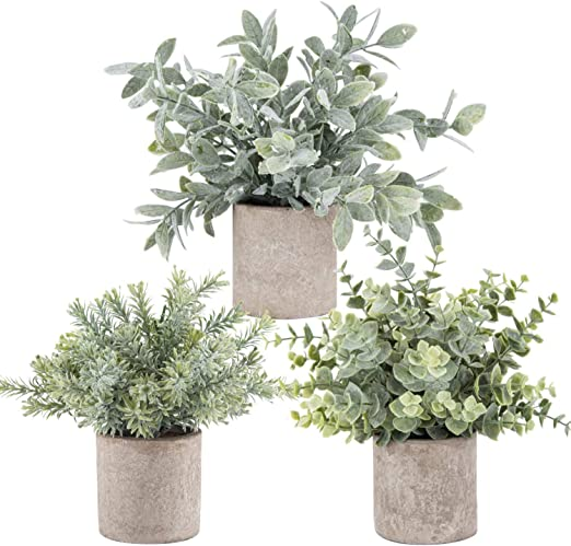 Der Rose 3 Pack Mini Potted Fake Plants Artificial Plastic Eucalyptus Plants