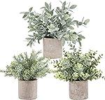 Der Rose 3 Pack Mini Potted Fake Plants Artificial Plastic Eucalyptus