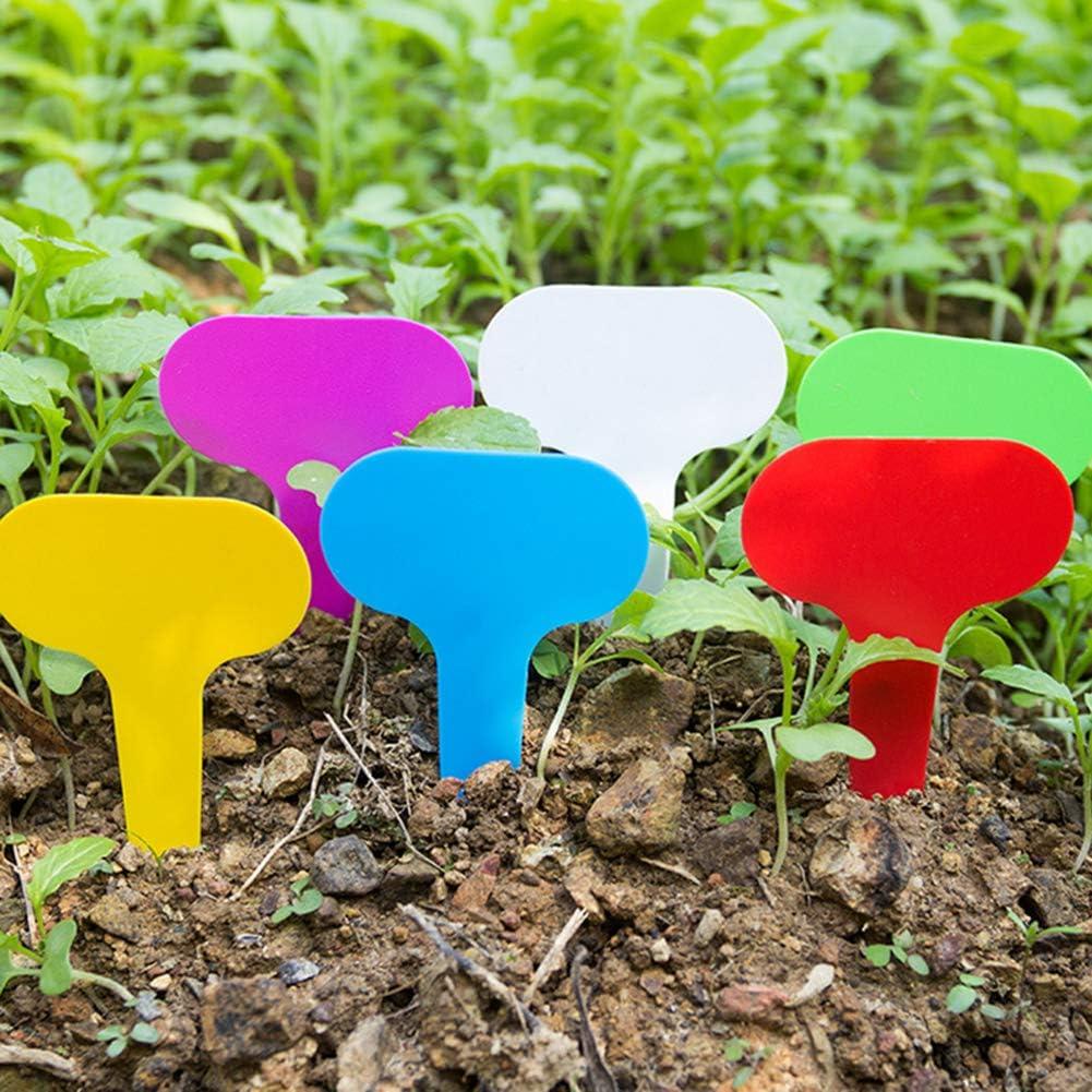 Yozhanhua - 200 etiquetas para plantas, accesorios de jardinería ...