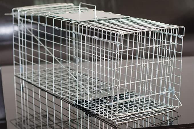 Gardigo - Jaula & Trasportín plegable de metal para mascota | Trampa de captura de animales vivos, gatos, perros, conejos, roedores - 66 x 23 x 26 cm: ...