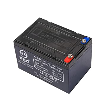 Amazon.com: zxtdr 6-DZM-12 batería de 12 V 14 Ah AGM ...