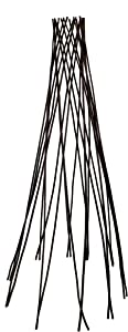 Master Garden Products Willow Round Teepee Trellis, 60-Inch
