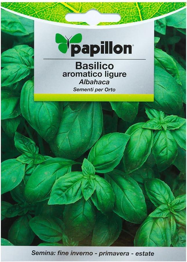 Semillas Aromáticas Albahaca Aromatica (5 Gramos): Amazon.es: Jardín
