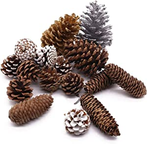 JOHOUSE Natural Pine Cones, 17PCS Holiday Party Favor Home Decor Pine Cones for Crafts Home Decoration Christmas Ornaments, 6 Different Sizes