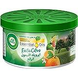 Air Wick Air Freshener Scented Gel Can, Citrus, 70 gm