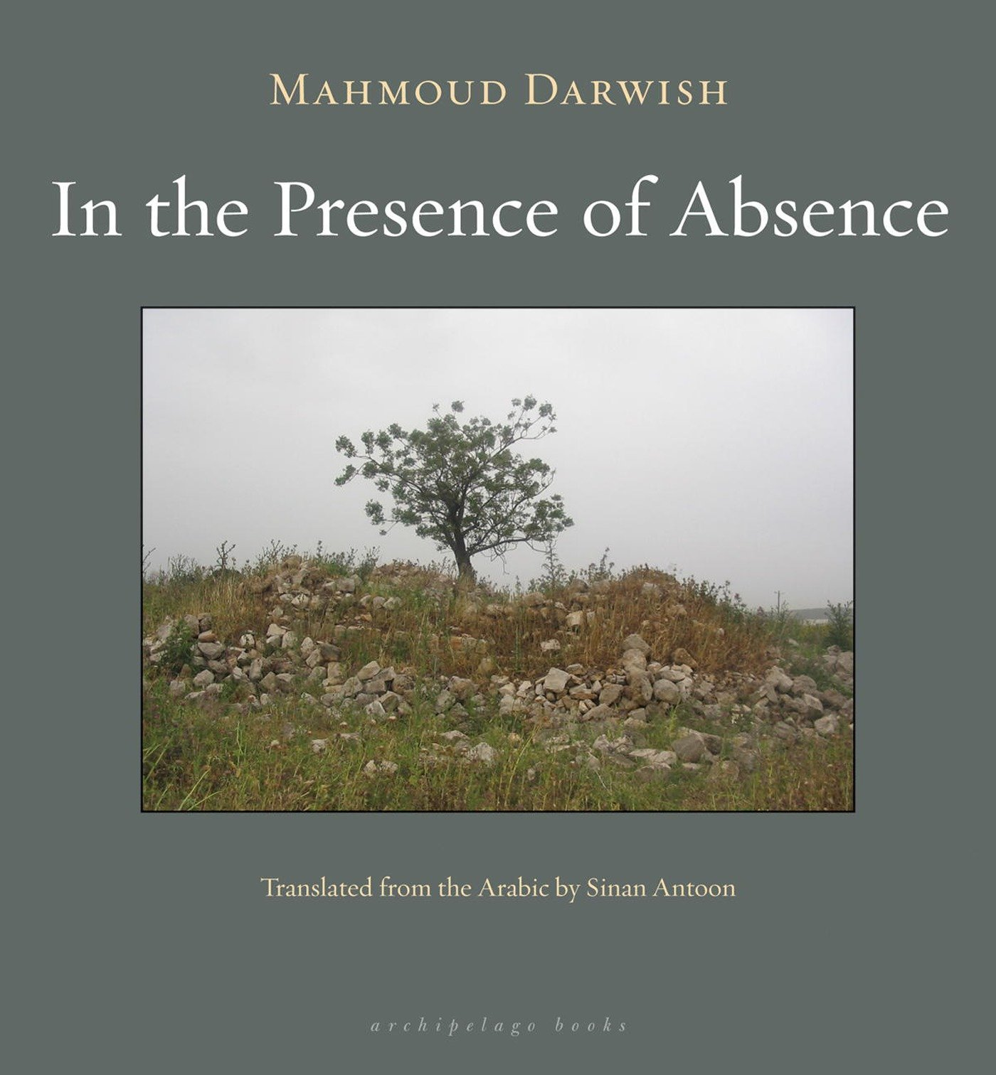 amazon in the presence of absence mahmoud darwish sinan antoon