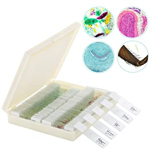 100Pcs Microscope Slides, Prepared Microscope Slide Set with Plastic Storage Box for Kids Students Home School Science Learning