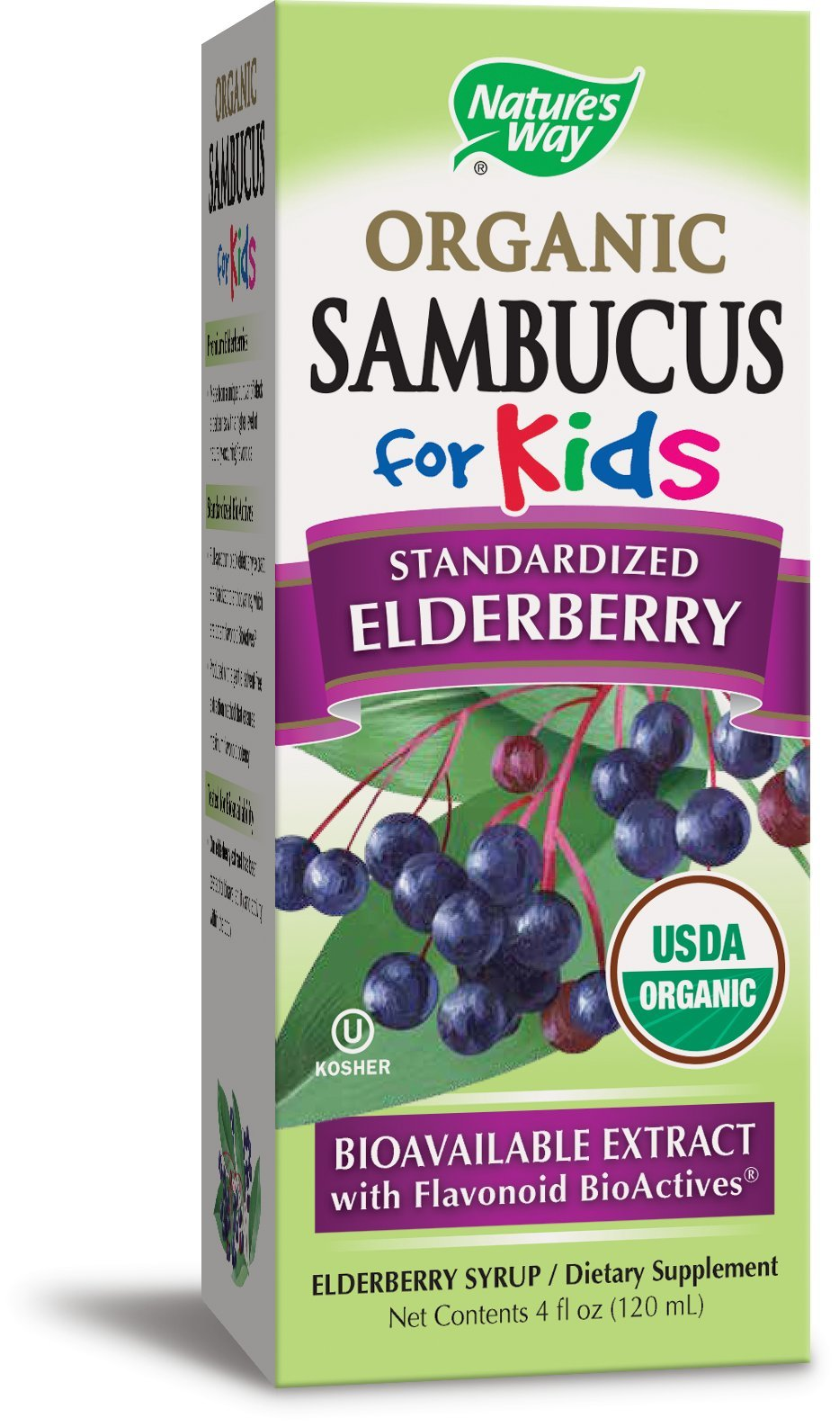 Nature's Way Sambucus for Kids, Organic Elderberry Syrup, 4 oz., 4 Fluid Ounce