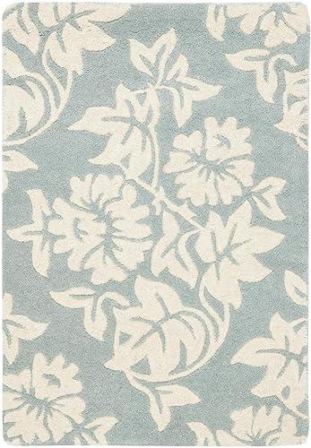Safavieh Soho Collection SOH770A Handmade Premium Wool Viscose Area Rug