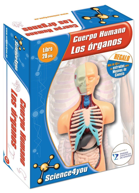 Cuerpo Humano Los órganos , Juguete Educativo A Partir de 6 años: Amazon.es: Juguetes y juegos