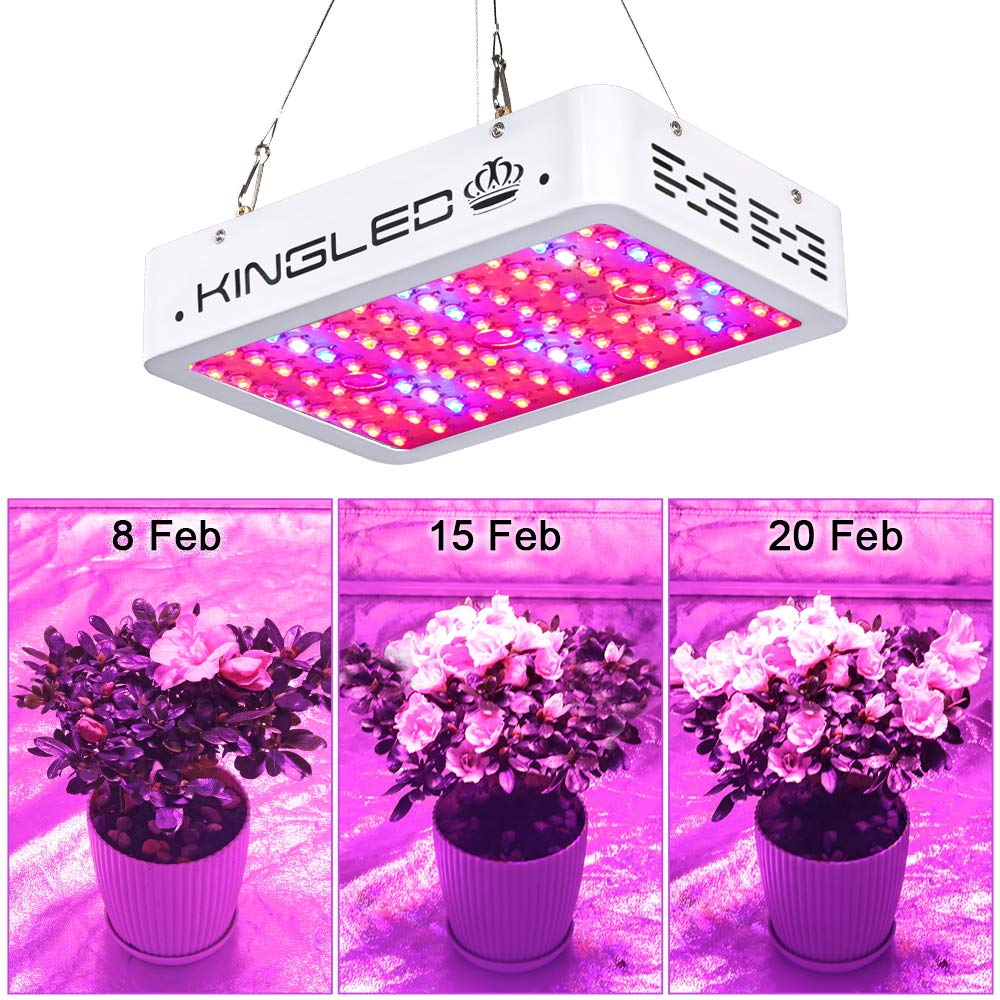amp;ir Full Veg With Grow And Led Chips Double Spectrum Plus 1000w Flower Uv Greenhouse Plant Light Indoor King For ONnwm0v8