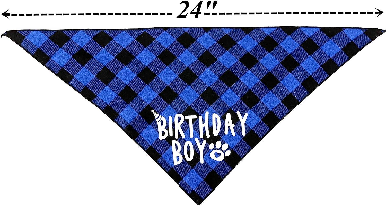 JPB Dog Birthday Party Supplies,Pet Birthday Hat and Boy Doggy Birthday Bandana Set