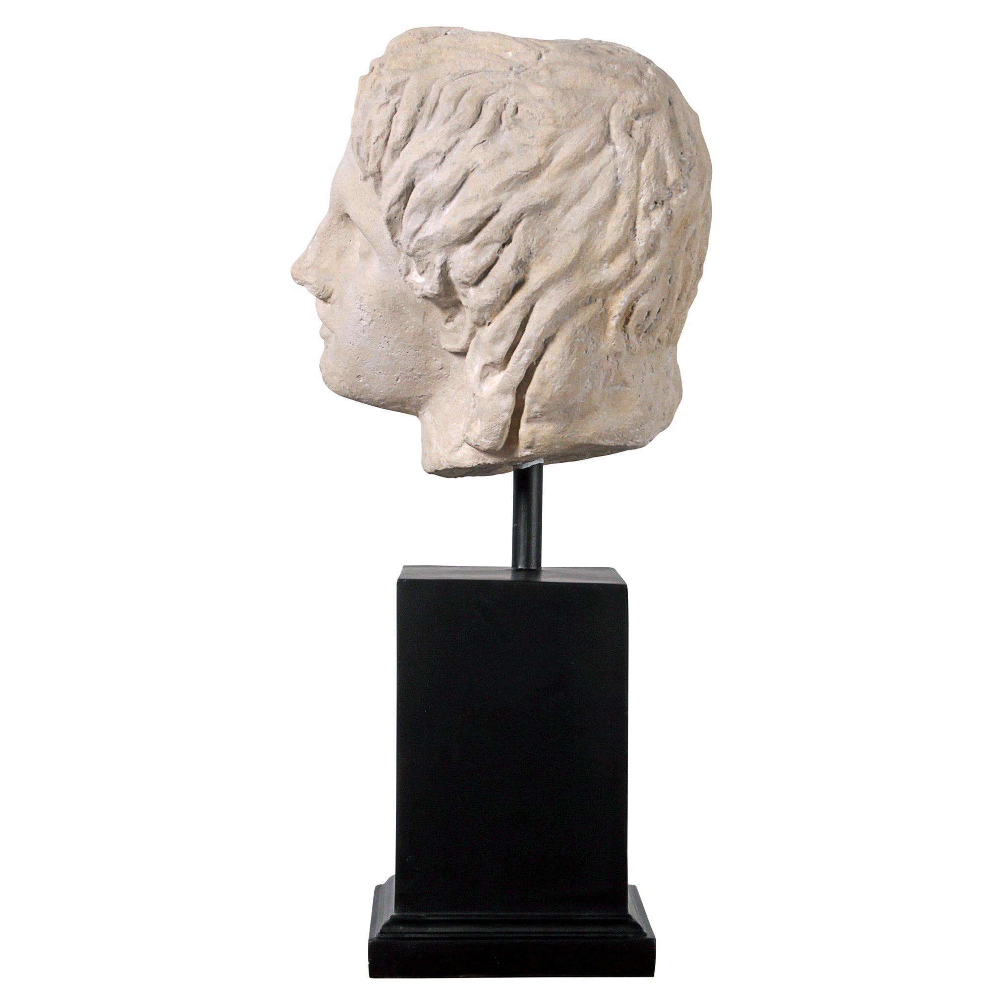 Design Toscano Alexander The Museum Mount Sculptural Bust, Antique Stone by Design Toscano (Image #4)