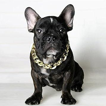 Rainsgift Hundehalsband Fur Franzosische Bulldogge Verstellbar Goldenes Halsband Fur Kleine Mittelgrosse Und Grosse Hunde Amazon De Haustier