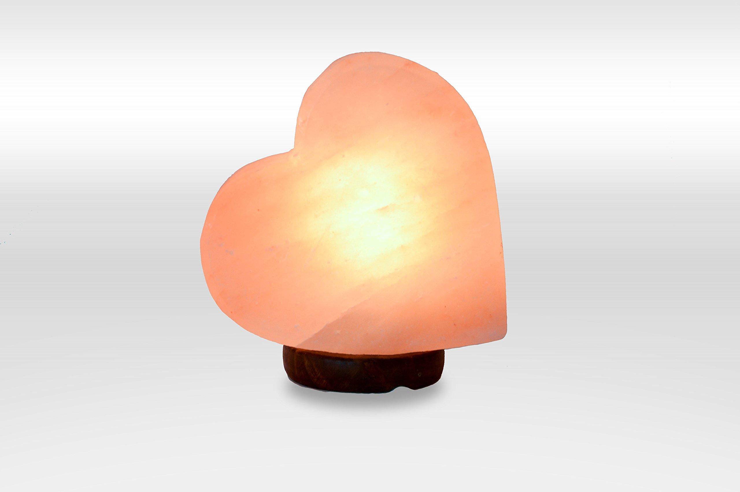 100% Natual Authentic Himalayan Crystal Rock Salt Lamp - DOG SHAPE