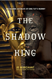 Amazon tutankhamen the search for an egyptian king ebook the shadow king the bizarre afterlife of king tuts mummy fandeluxe Gallery