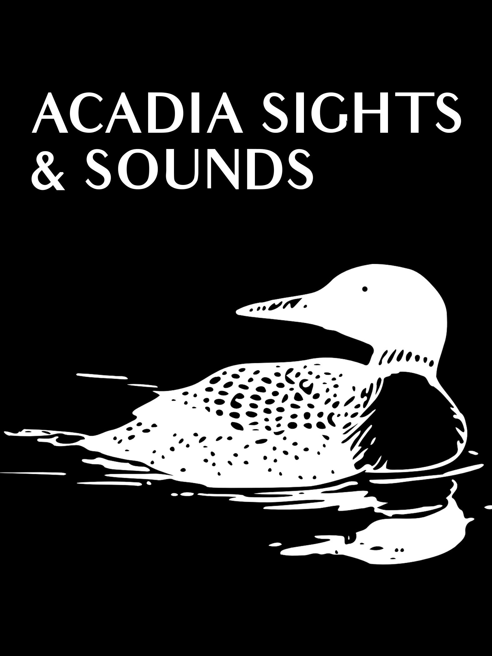 Acadia Sights & Sounds