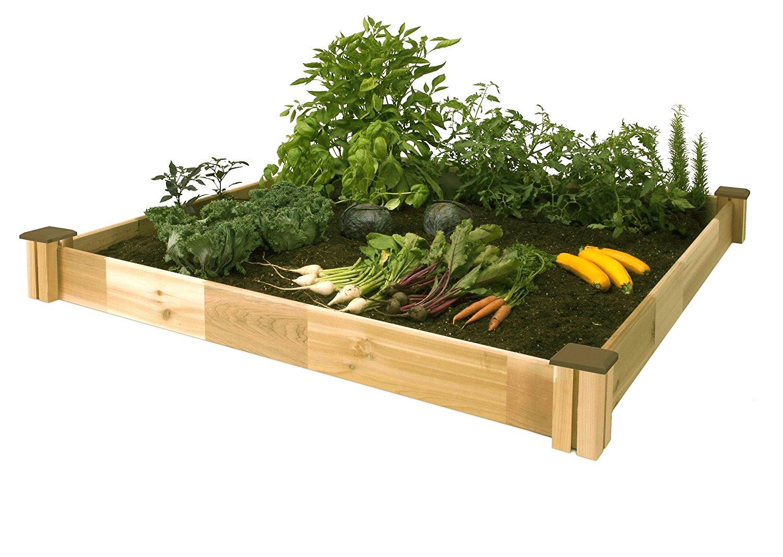 Above Ground Garden Box Amazon Com