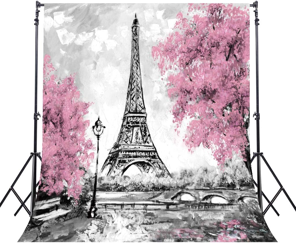 8x12 FT Heels and Dresses Vinyl Photography Backdrop,Paris Boutique French Retro Dress Shoes Eiffel Tower Background for Baby Birthday Party Wedding Graduation Home Decoration